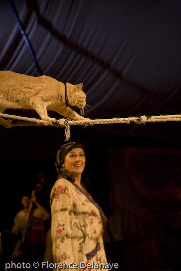 festival la route du cirque à Nexon 2008